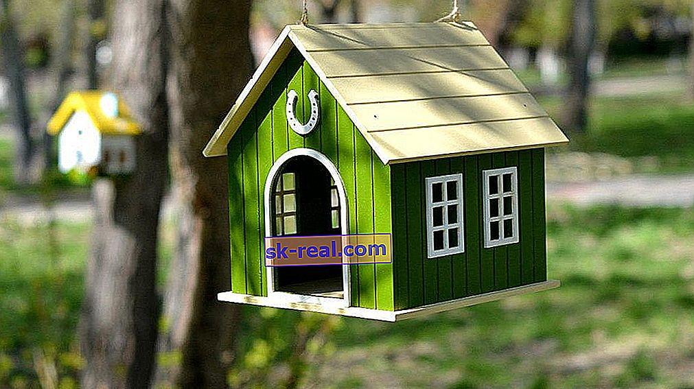 Kako ukrasiti kućicu za ptice?